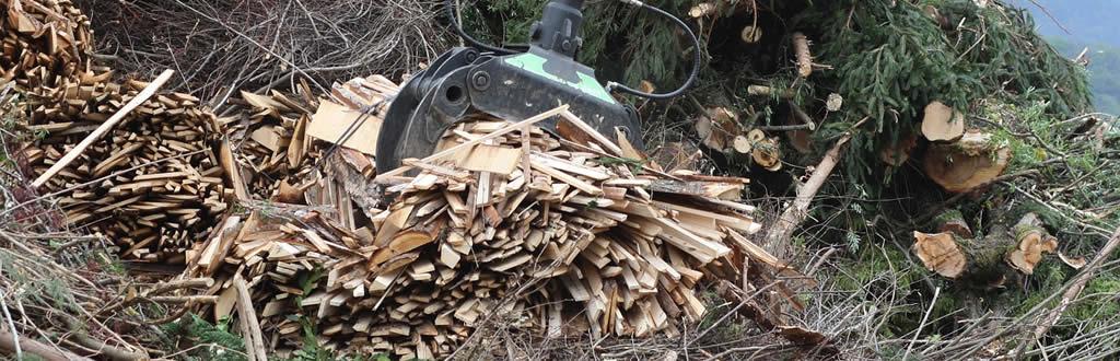 ¿Qué es la biomasa y cómo se produce?