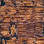 Impacto ambiental: La Madera en la Economía Circular